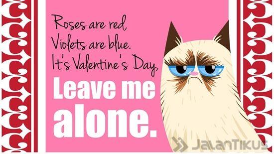 18 Kata Kata Lucu Yang Bisa Digunakan Untuk Menolak Hari Valentine 14
