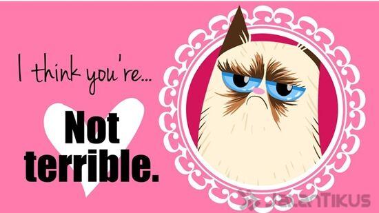 18 Kata Kata Lucu Yang Bisa Digunakan Untuk Menolak Hari Valentine 3