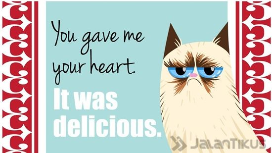 18 Kata Kata Lucu Yang Bisa Digunakan Untuk Menolak Hari Valentine 4