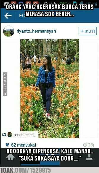 Meme Suka Suka Gue Dong Perusak Taman Bunga Amarillys 13