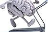 Studi: Cara Kerja Otak Berbeda pada Setiap Musim