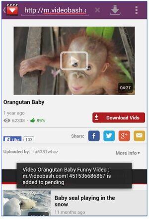 downloadvideofacebook
