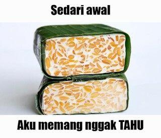 Meme Tahu 10