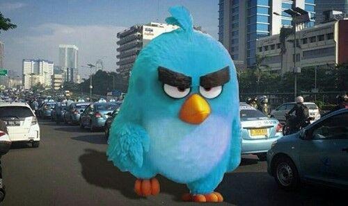 Meme Demo Taksi Blue Bird 1