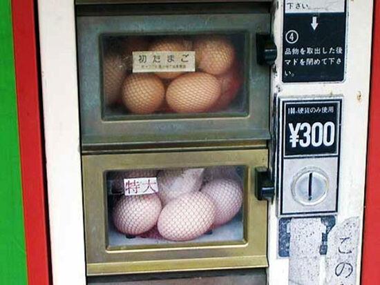 Wwwweirdasianewscom Eggvending