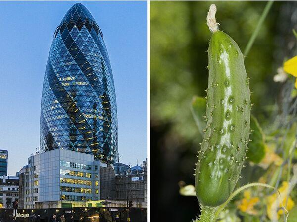Bangunan Megah Terinspirasi Alam 1