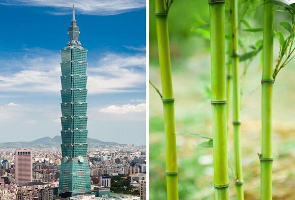 Bangunan Megah Terinspirasi Alam 2