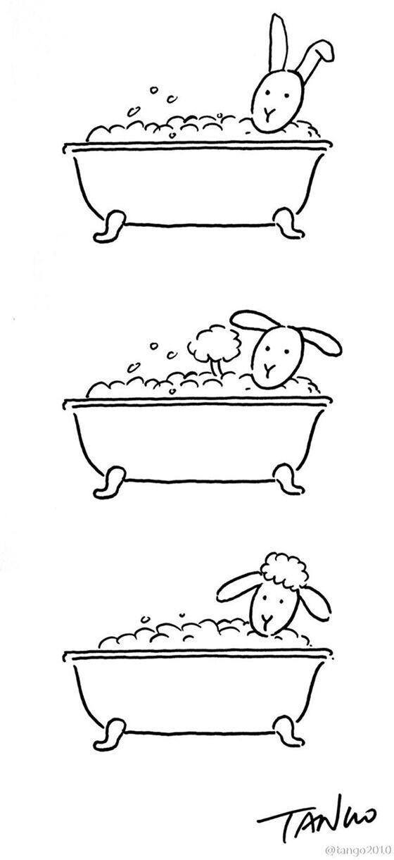 Kelinci Atau Domba
