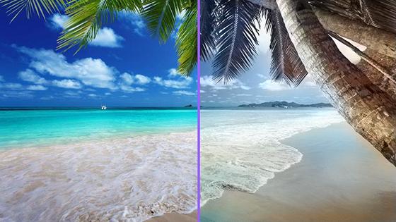 Rendered Comparison