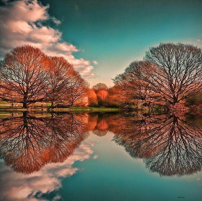 Amazing Ilusi Optik Yang Sempurna