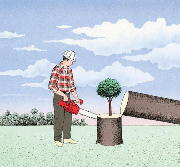 Jangan Hanya Menebang Pohon Tanpa Menanam Kembali
