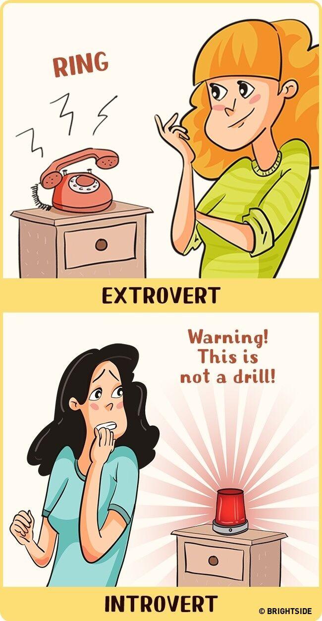 Perbandingan Introvert Dan Ekstrovert 3