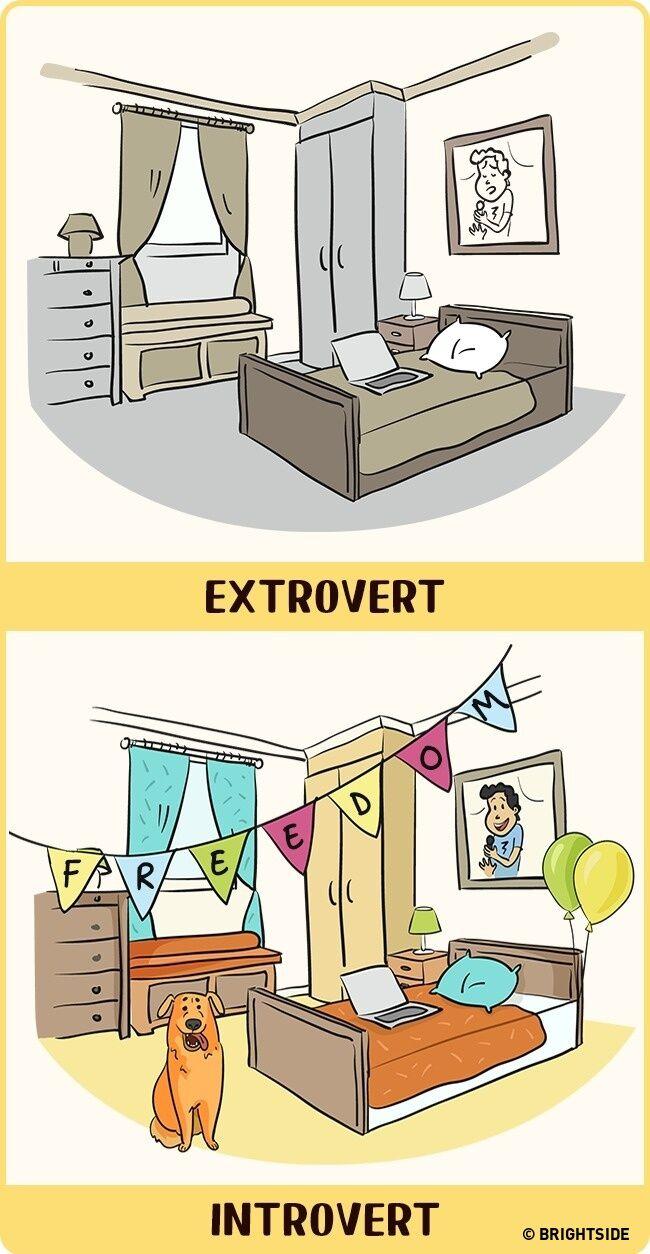 Perbandingan Introvert Dan Ekstrovert 8