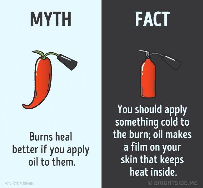 Mitos Fakta Tentang Tubuh Kita 12