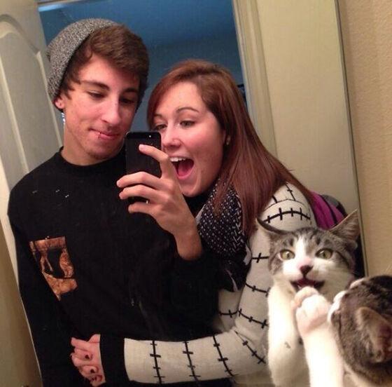 Photobomb Kucing 7