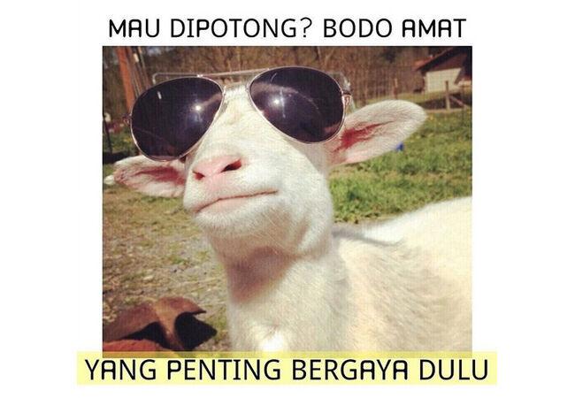 Meme Adha 1