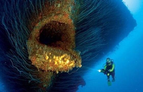 Foto Kengerian Lautan 10