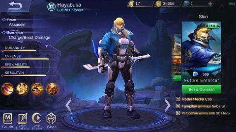 Hayabusa 02d51