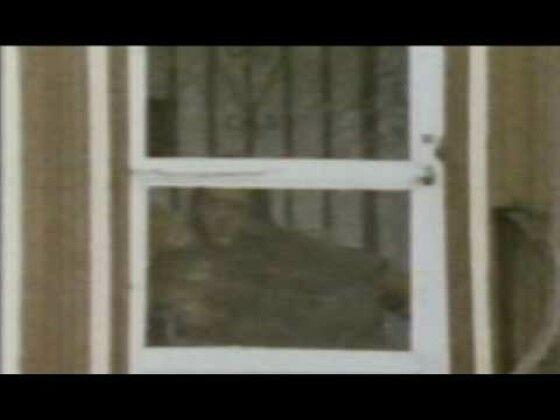 Penampakan Hantu Selebritis 5 3b994