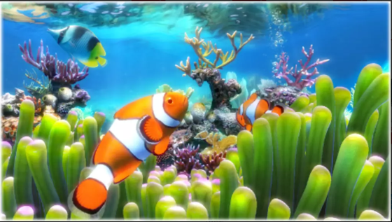 Wallpaper Aquarium Bergerak Windows 7 1 f8457