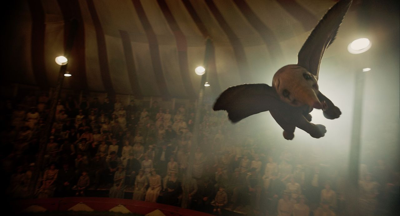 Dumbo 1 Acd66