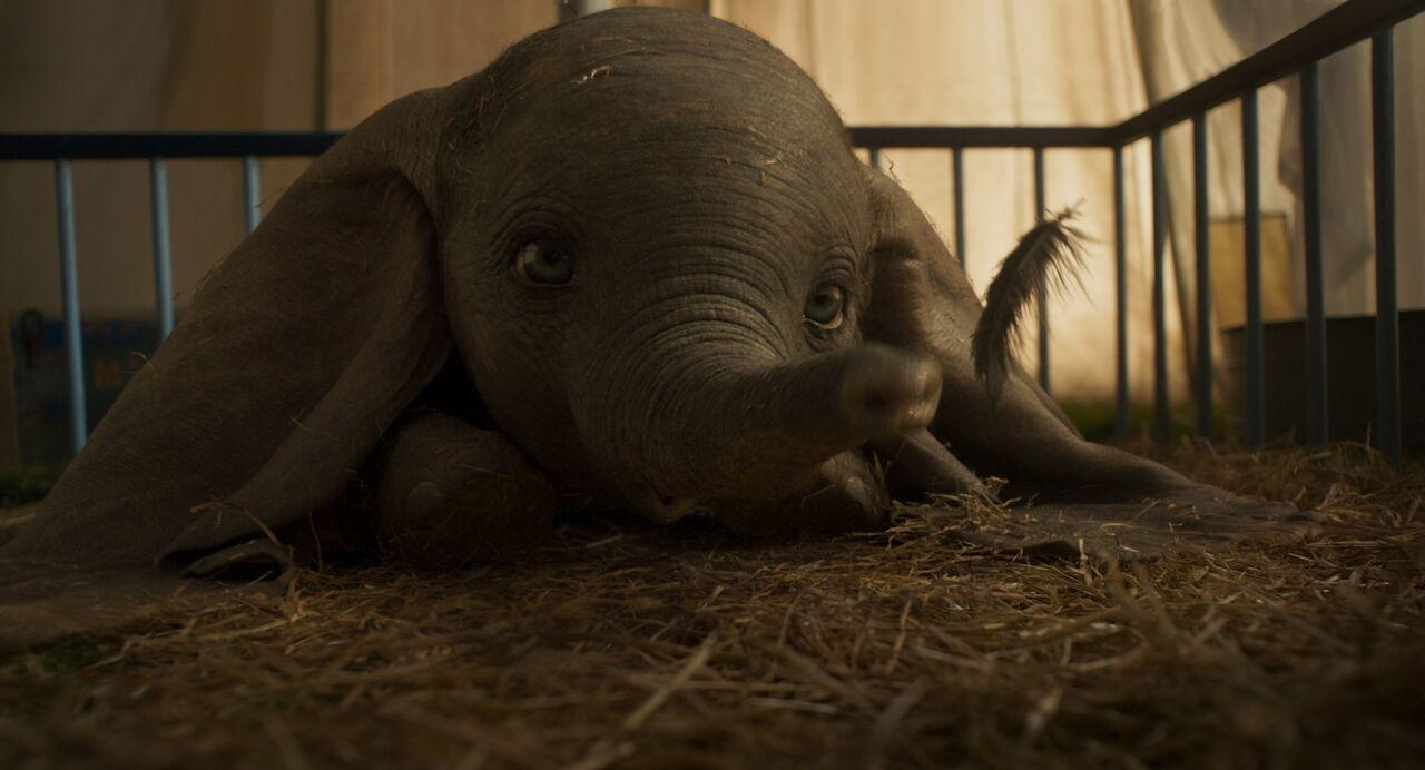 Dumbo2 982e1