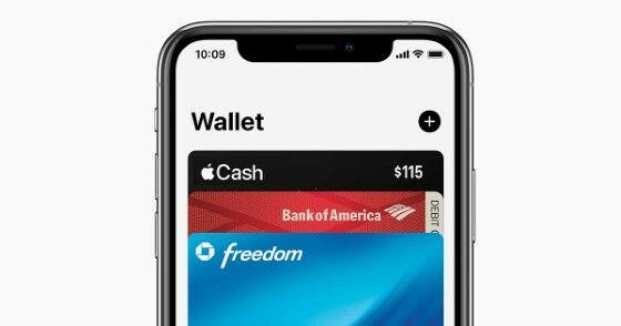 Apple Wallet Custom 5a3b6