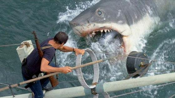 Jaws Cebf5
