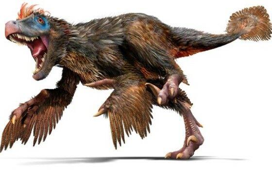 Mitos Dinosaurus 4 05127