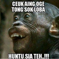 Meme Sunda 18 0eb4b