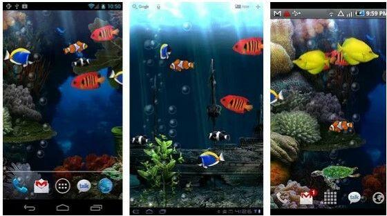 Wp Aquarium Dori Custom 7d65e