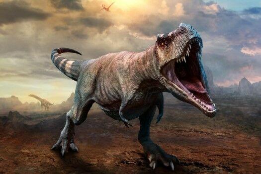 Dino1 Custom 7758f