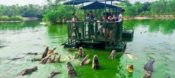 Destinasi Wisata Mengerikan Elephant Kingdom Thailand 9d42c