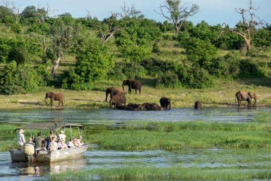 Hewan Di Afrika B1fac