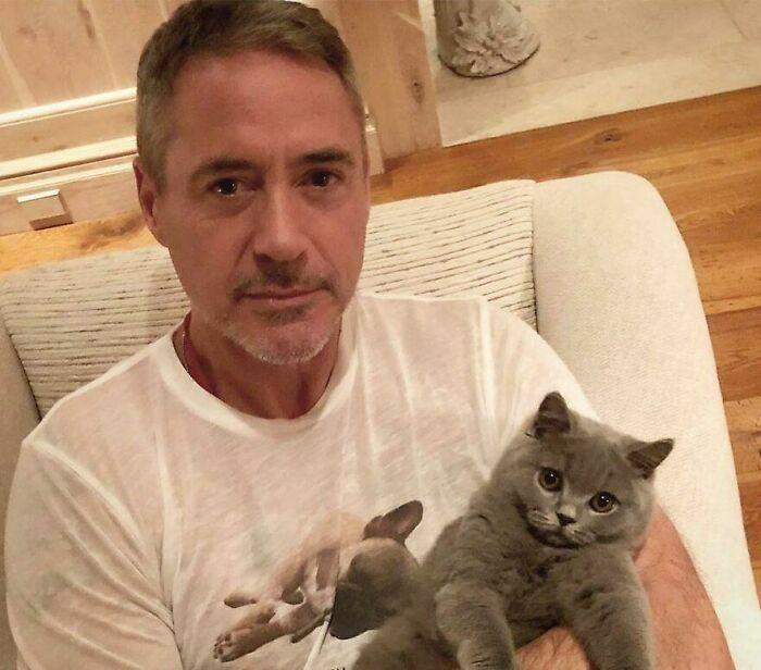 Robert Downey Jr Ironman Kucing 02212