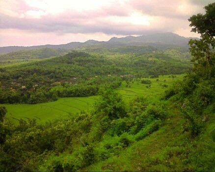 Jenis Fosil Yang Diperkirakan Usianya Paling Tua Di Indonesia Adalah Ead63