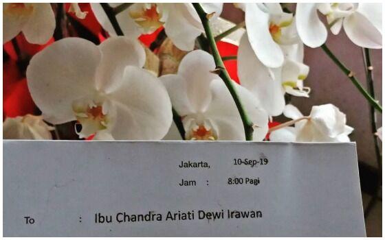 Artis Indonesia Yang Dapet Kado Dari Jokowi Ria Irawan Aed93