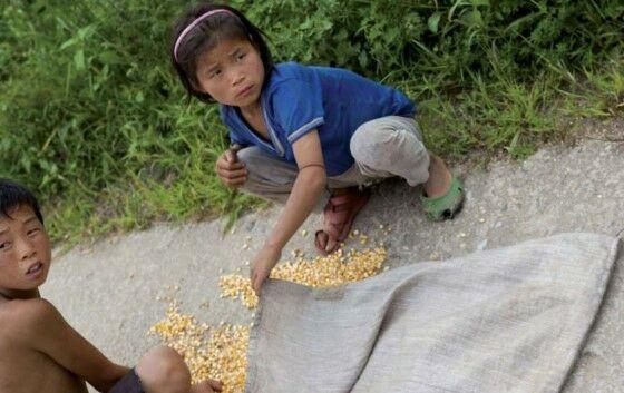 Kehidupan Warga Korea Utara 67909