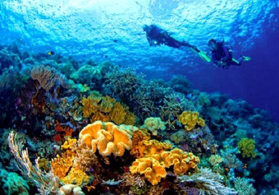 Tempat Wisata Indonesia Yang Mendunia 8 4f353
