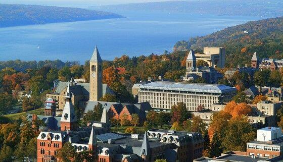 Cornell University C775a
