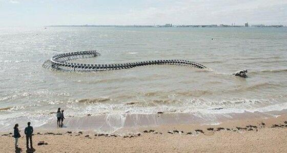 Patung Kerangka Ular Raksasa Di Pantai Dekat Muara Loire F1a09
