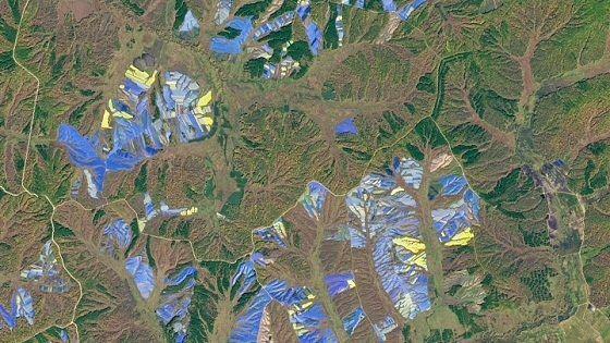 Pertanian Ginseng Di Utara China 4e431 131a3