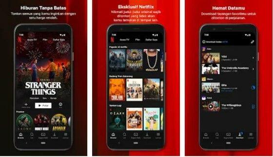 Download Netflix Mod Apk Fa1e7