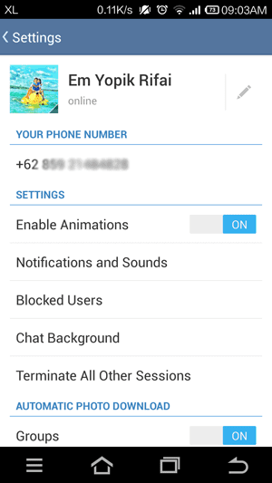 Review Telegram 13