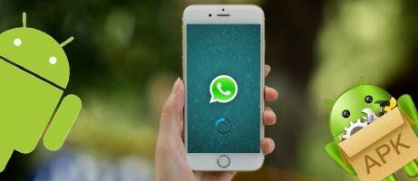 Download Fmwhatsapp Apk Versi Terbaru 790 Gratis Jalantikuscom