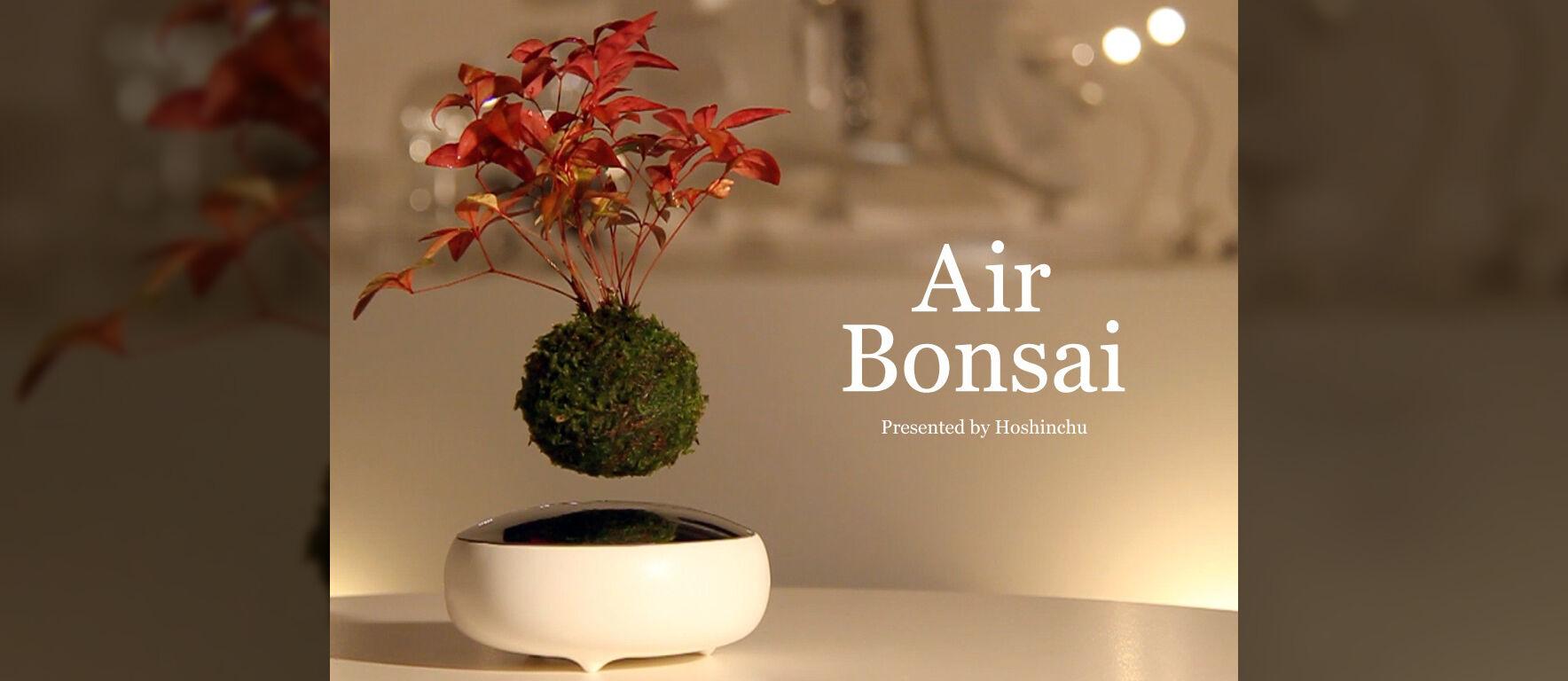 Wow! Proyek Air Bonsai Sudah Kumpulkan Lebih dari 7,5 Miliar Rupiah!