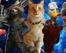 Karakter Hewan Terkuat di Marvel Universe | Goose Kalah?