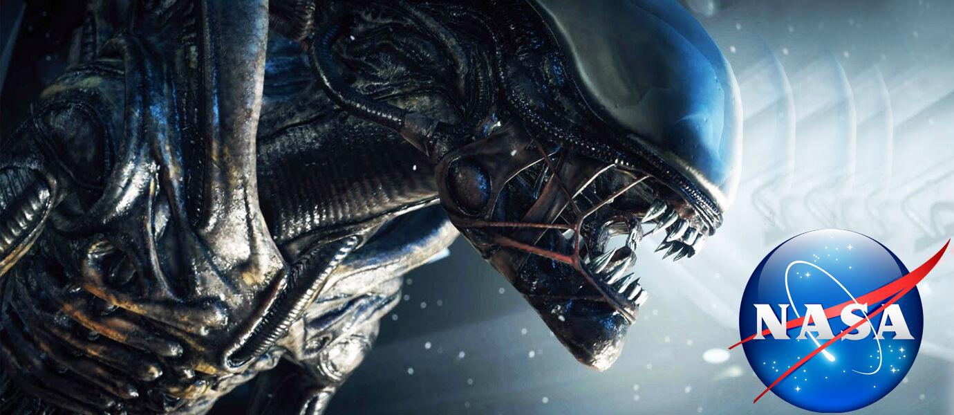 20 Tahun Lagi Umat Manusia Bisa Bertemu Alien
