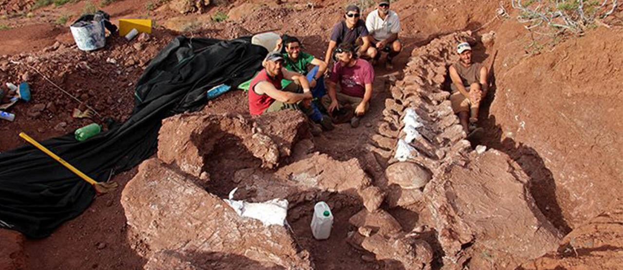 Fosil Dinosaurus T Rex Bd9b6