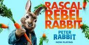 Peter Rabbit Banner